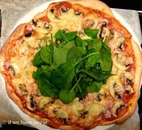 Wholewheat Pizza Dough | Thermomix